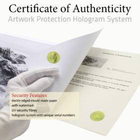 l'oeuvre et son certificat d'authenticité